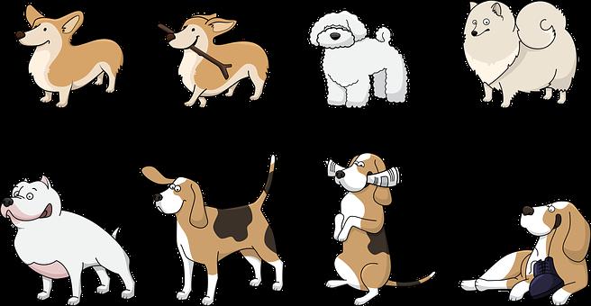 Miért érdemes ingyen elvihető kutyák közül választani?